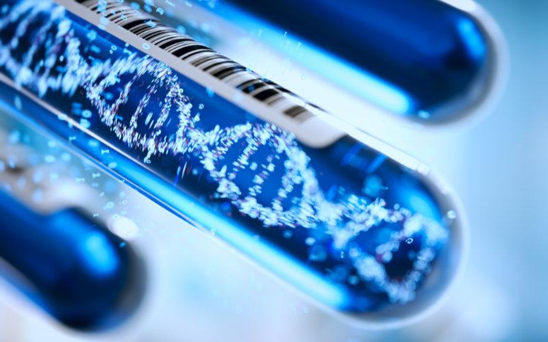 Genetics & Genomics